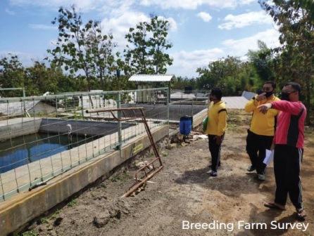 Breeding Farm Survey